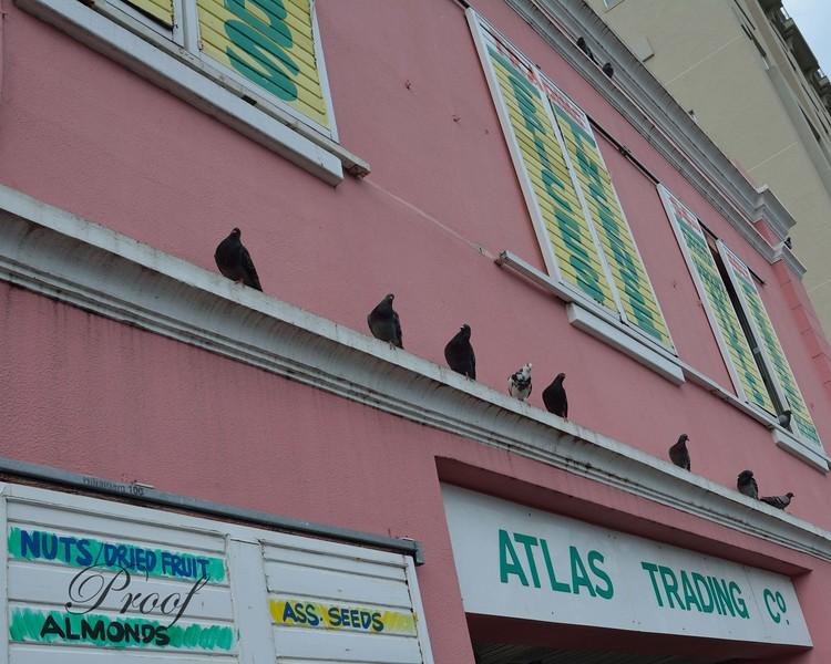Historic Atlas Trading Spice Shop