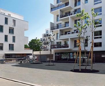 01 Stiftung Alterswohnungen der Stadt Zürich © Thomas Madlener