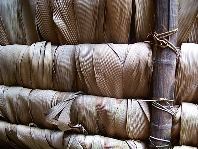 14 ECUADOR. Dachkonstruktion eines traditionellen Waorani Hauses mit Palmblättern, Ecuador.