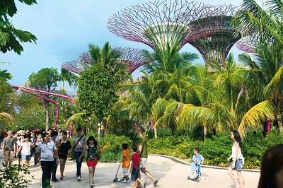 Gardens by the Bay, Grant Associates, 2012, Singapur.Professor Christophe Girot, (c) ETH LVML Ilmar Hurkxkens, Magda Kaufmann, James Melsom and Elsa Tamvakera