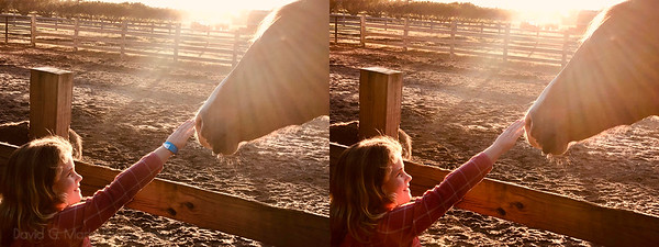 """Retouch Request: """"That's my daughter who's 6... this is probably the best picture I've ever taken. Want to frame it but the blue armband kind of takes away some of the beauty of it. I would be eternally grateful if you could remove it."""""""