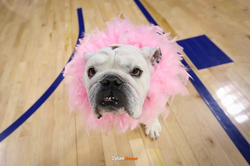 Missouri Valley Conference: Evansville Aces vs. Drake Bulldogs