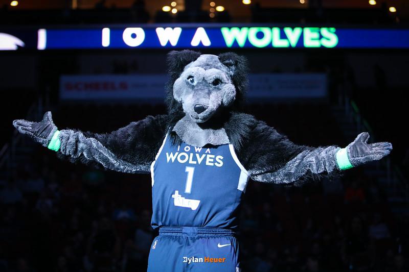 Iowa Wolves vs. Northern Arizona Suns