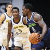 Iowa Wolves vs. Fort Wayne Mad Ants