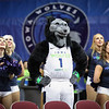 NBA G League: Stockton Kings vs. Iowa Wolves