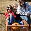 Pumpkins 2010__011