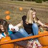Pumpkins 2010__029