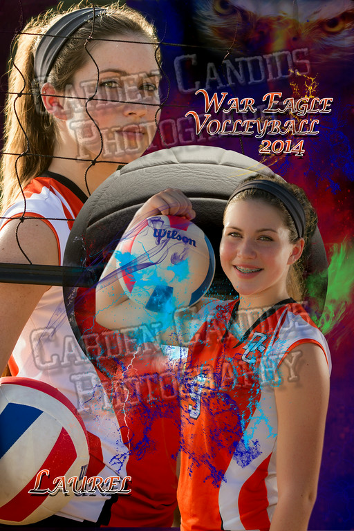 Laurel Hecht-WarEagleVolleyball2014