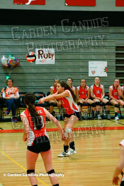 DHS JV Volleyball vs Parkland 10-15-15-022