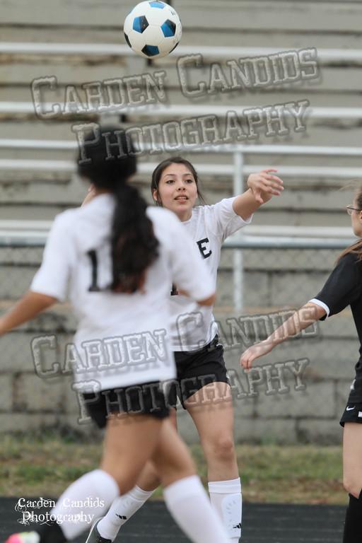 DHS JV Ladies Soccer vs Reynolds 3-18-15-38