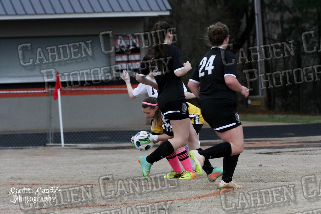 DHS JV Ladies Soccer vs Reynolds 3-18-15-28