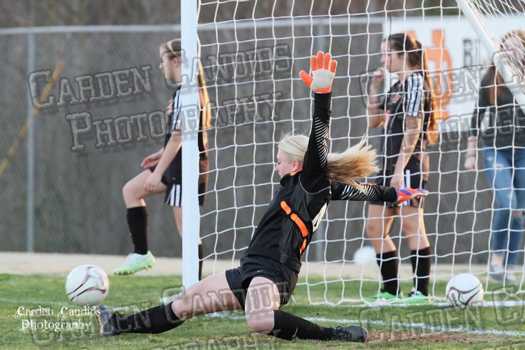 DHS VARSITY Ladies Soccer vs N Davidson - 3-16-15--25