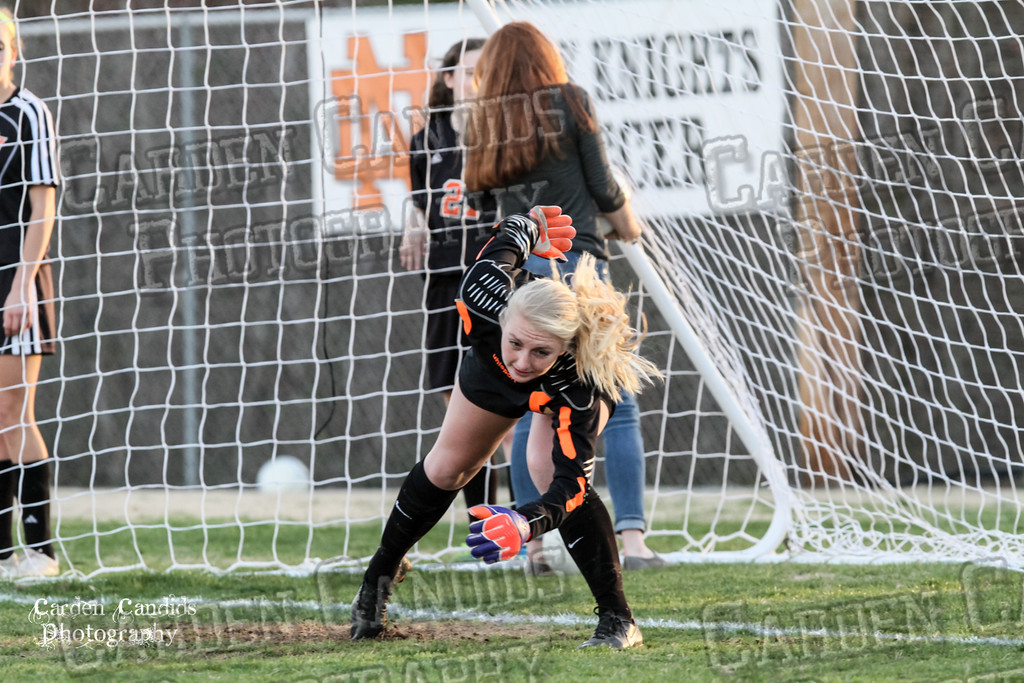 DHS VARSITY Ladies Soccer vs N Davidson - 3-16-15--33