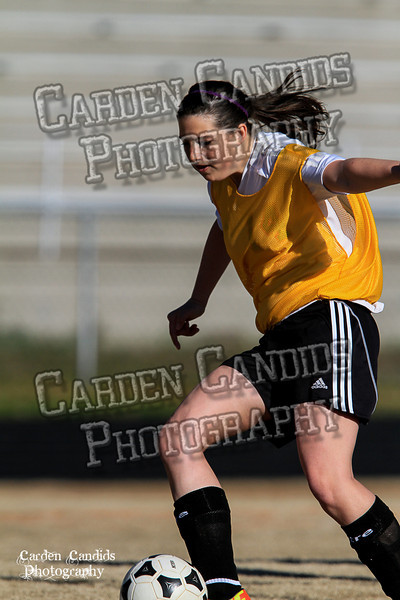 DHS Ladies JV vs Forbush 3-19-14