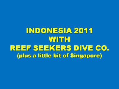INDONESIA 2011 title slide