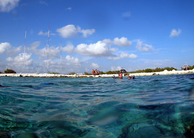 Vince and Darcy heading for land at Angel City dive spot.
