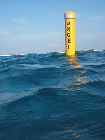 Angel City buoy