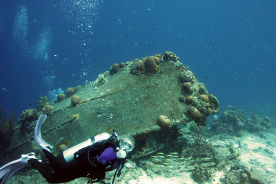 Darcy at the La Machaca wreck