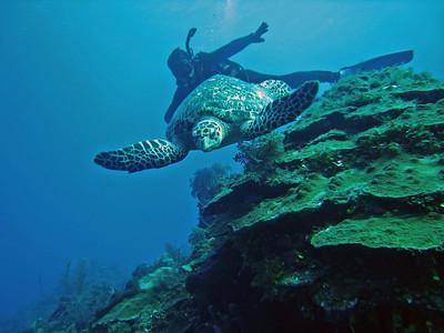 Providenciales, Turks & Caicos - December, 2007