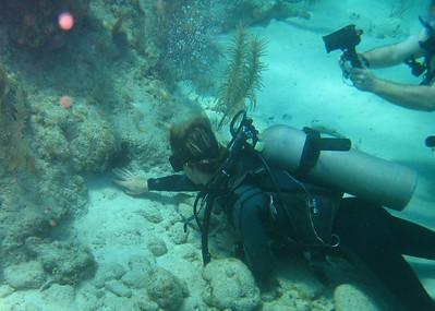 Divemaster Stefan probing for a cleaner shrimp.