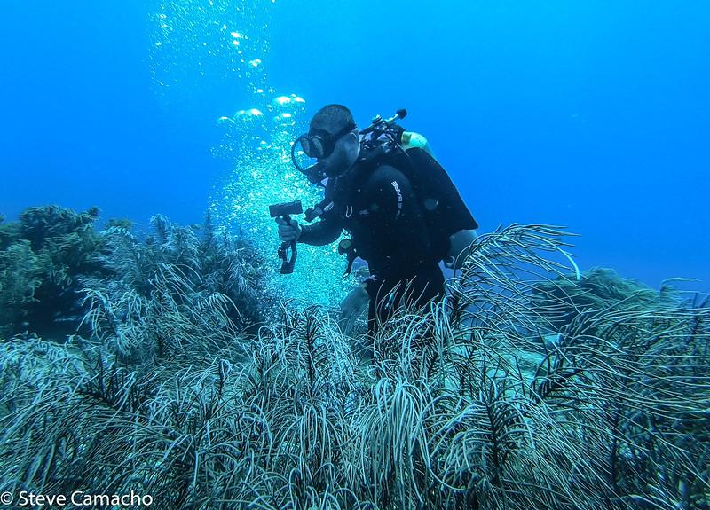 Aruba GoPro-61.jpg