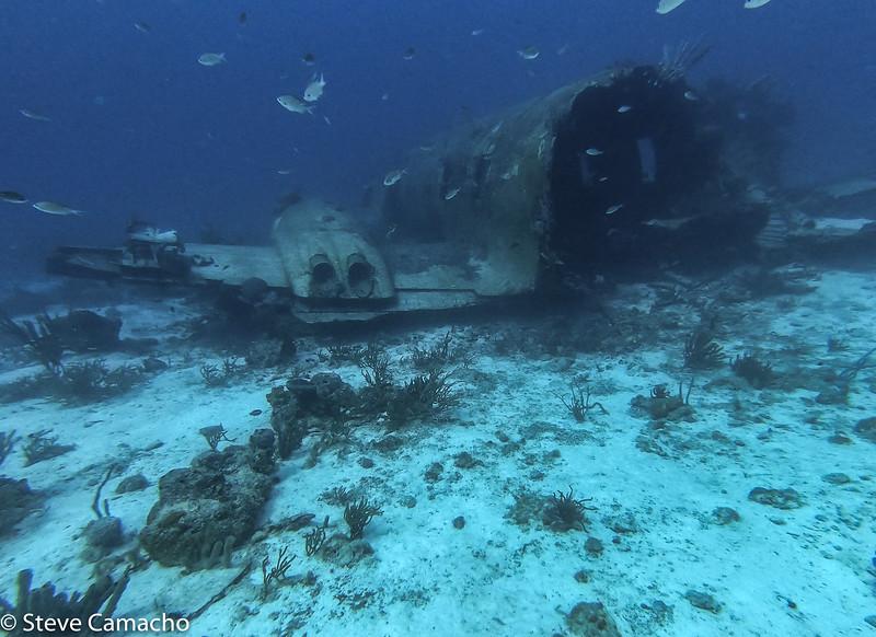 Aruba GoPro-48.jpg