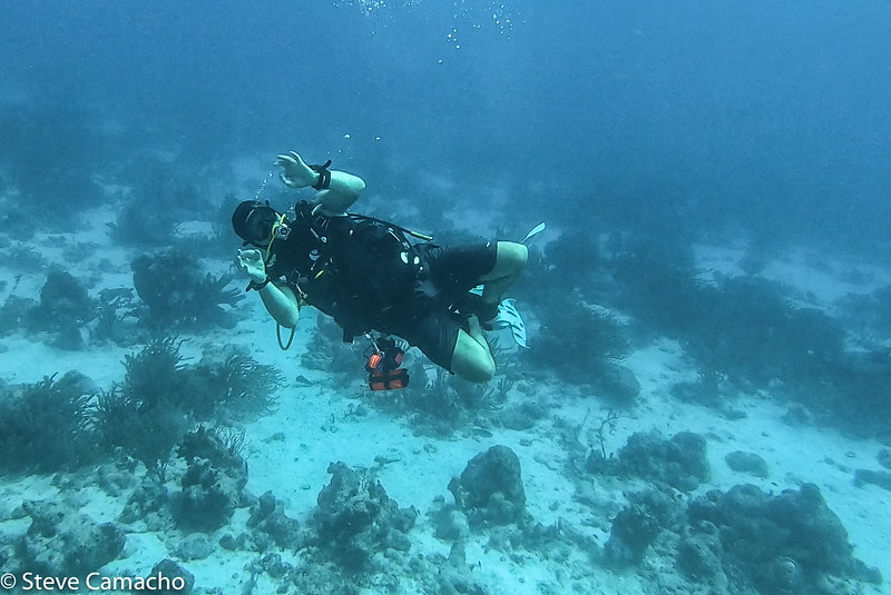 Aruba GoPro-24.jpg