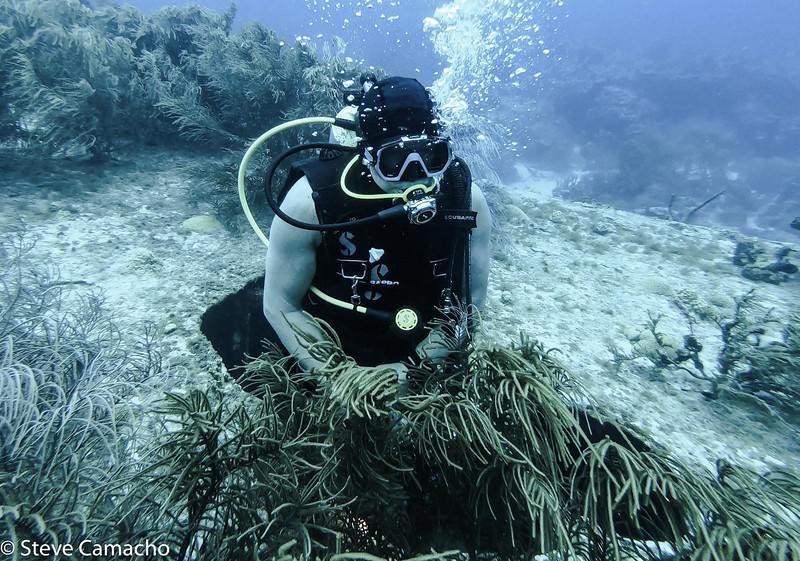 Aruba GoPro-90.jpg