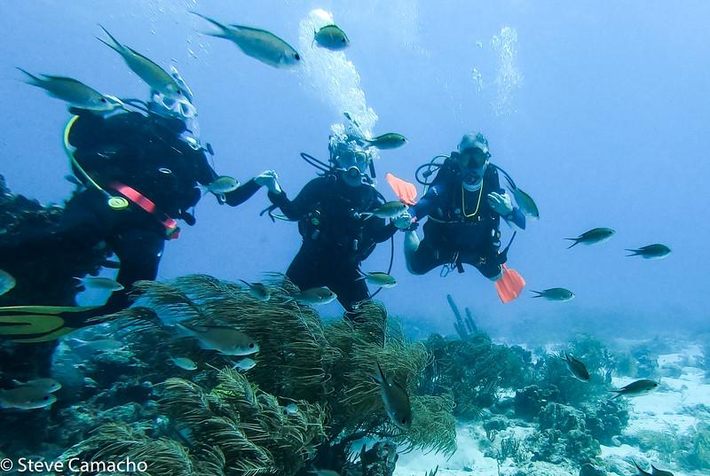 Aruba GoPro-14.jpg