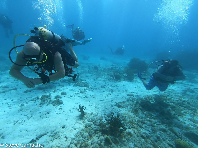 Aruba GoPro-45.jpg