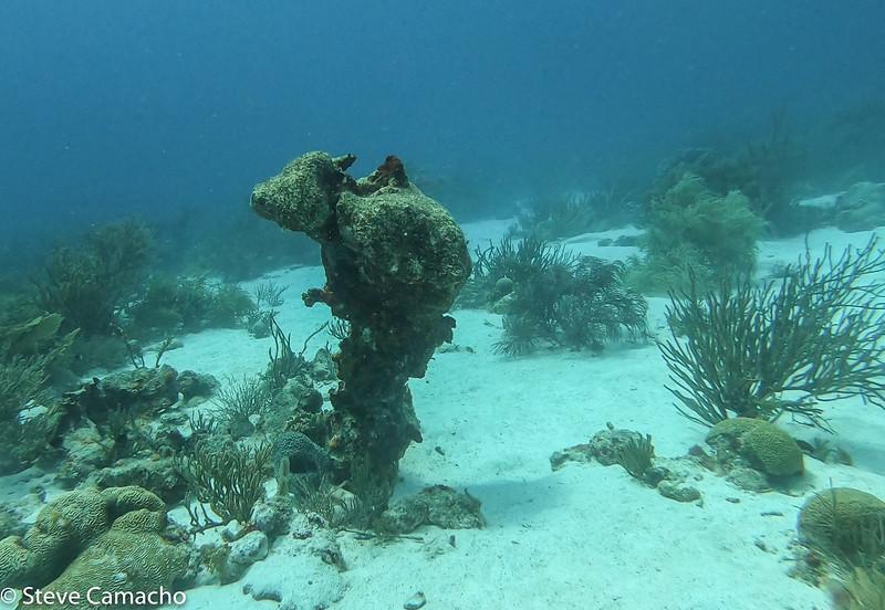 Aruba GoPro-92.jpg