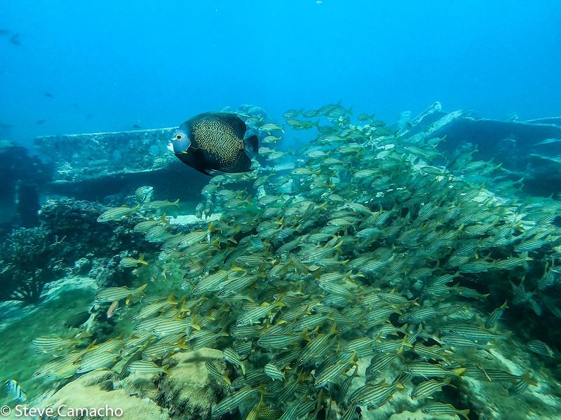 Aruba GoPro-27.jpg