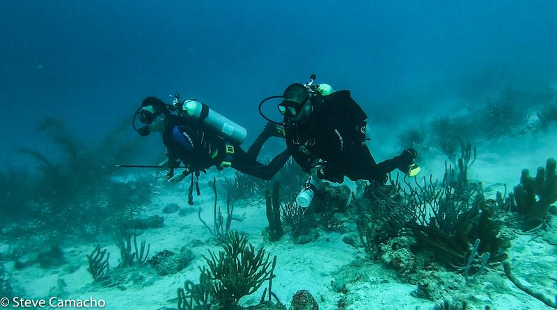 Aruba GoPro-63.jpg