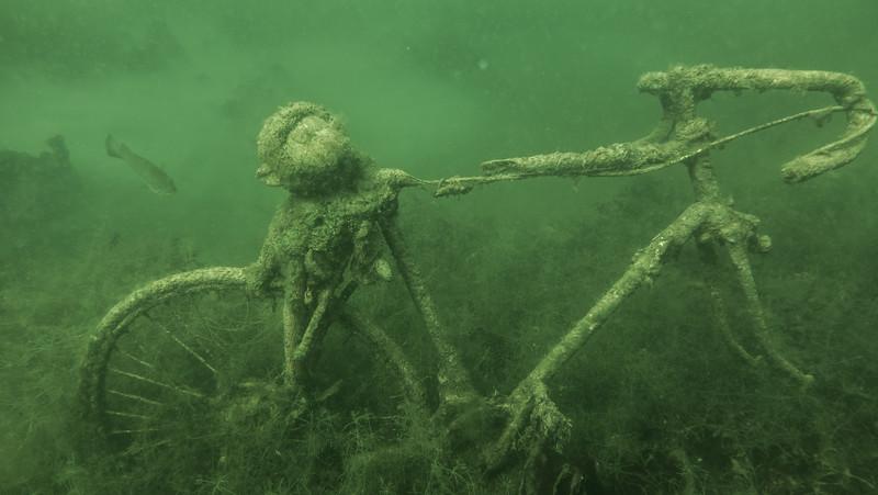 Gullivers Lake  July 24-23.jpg