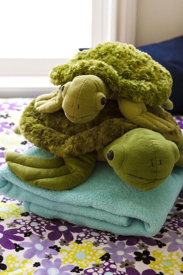 The Turtle Family with Throw Blanket and DIY Sleeping Bag Cover