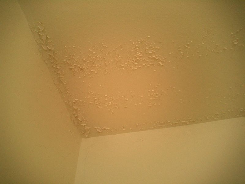 ceiling directly above shower