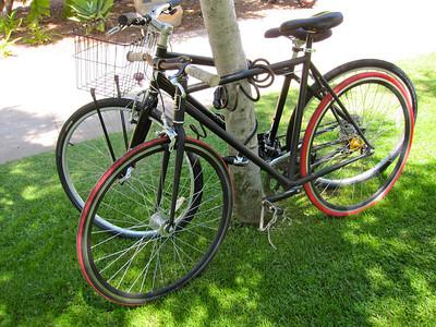 Fixie bikes are popular
