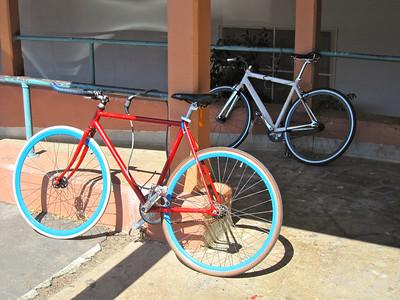 Bikes around campus