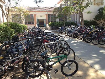 More than 200 bikes!