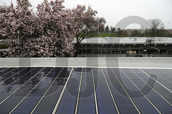 Solar pads cover the roof of Atkinson Elementary School in Southeast Portland.  A bond measure on the May 17 ballot would provide similar environmentally friendly upgrades to all Portland Public Schools campuses.  Sam Tenney / DJC