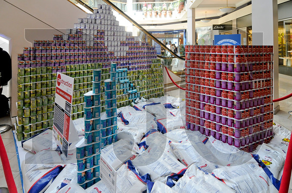 0407_Canstruction_07.jpg
