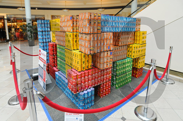 0407_Canstruction_14.jpg