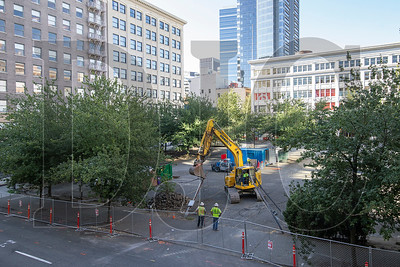Crews with McDonald Excavating on Thursday began removing power lines and trees at the Block 216 site in downtown Portland after a shoring and excavation permit was issued earlier in the week. (Sam Tenney/DJC)