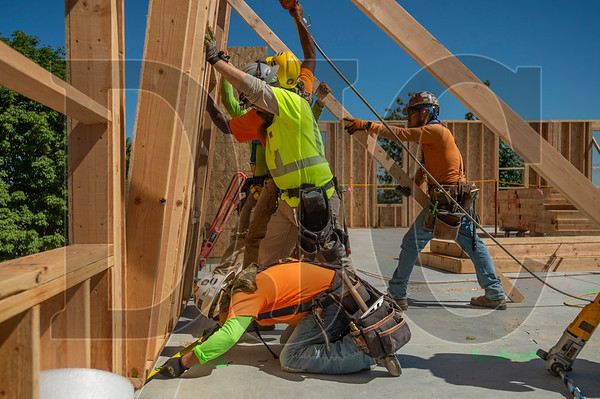 A crew of Wood Mechanix carpenters lift a wall panel into place. (Josh Kulla/DJC)