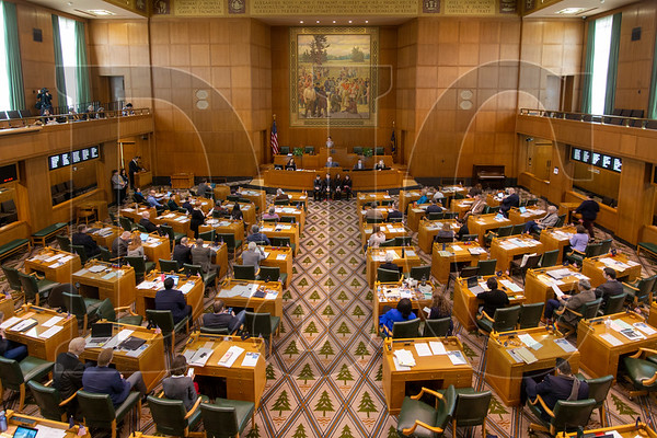A bill proposed in the Oregon House would eliminate state tax benefits for opportunity zone projects for a one-year period. (Sam Tenney/DJC)