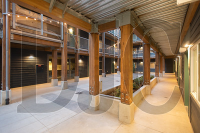 Timber columns and beams figure prominently in the buildings' design. (Josh Kulla/DJC)
