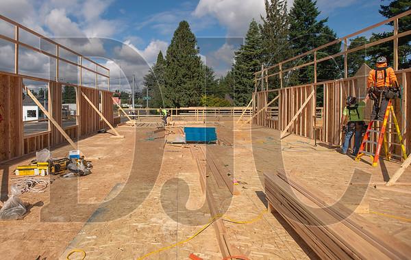 Carpenters with Wood Mechanix frame exterior walls at Archibald Grove. (Josh Kulla/DJC)