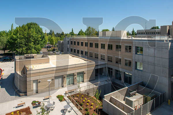 Stormwater mitigation areas and an employee patio can be seen from the building's south wing. (Josh Kulla/DJC)