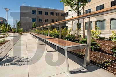 The project included an extensive landscaping remodel with stormwater detention rain gardens and new pedestrian amenities. (Josh Kulla/DJC)
