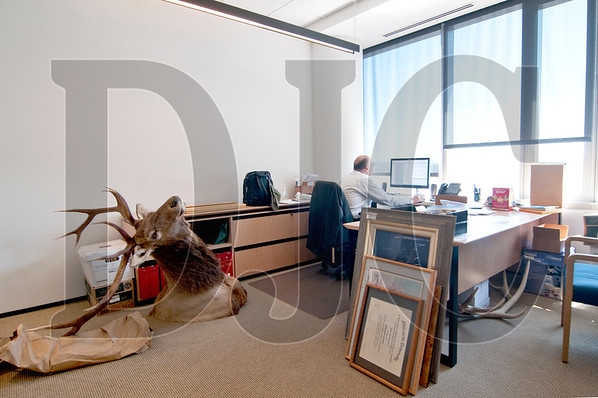 """Partner Eugene A. Frassetto works in his office among framed degrees, artwork, and """"Elvis,"""" a six-point elk he bagged in Malheur County, waiting to be mounted on the walls."""